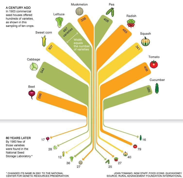 Monsanto contrôle 90% des cinq cultures principales (maïs, le soja, le coton, le colza et la betterave à sucre)