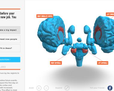 Cartographie interactive du Cerveau Trouver un esprit similaire ?