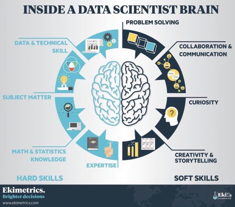 Dans la tête d'une Data Scientist
