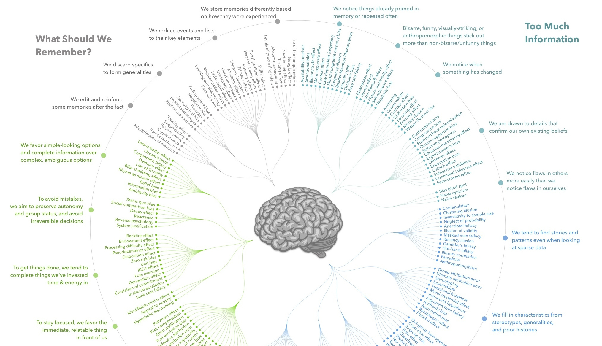 Every Single Cognitive Bias in One Infographic